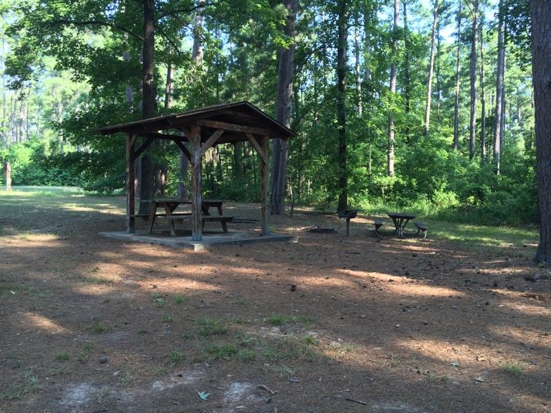 RRAD- Tent Spot.jpg