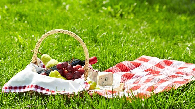 vz_odr_summer_picnic_750x421_jul14.jpg